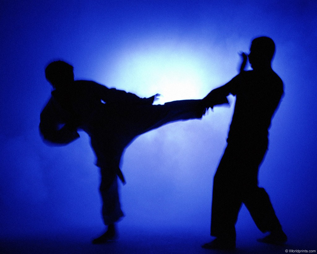 karate-0626