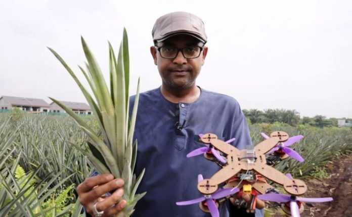 dronovi od ananasa 696x430 1