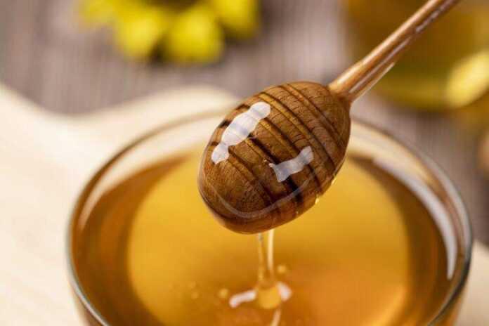 honey 4770245 1920 750x500 1