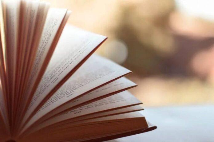knjiga knjige rijeci rjecnik pixabay