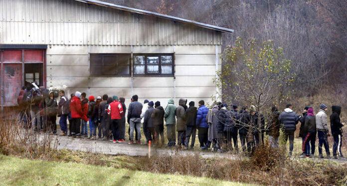 migranti blazuj