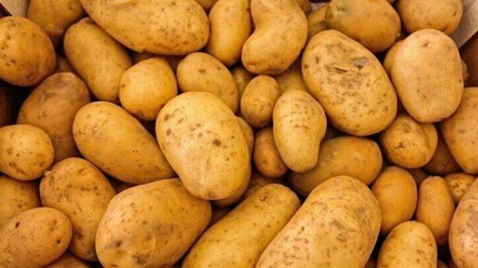 potatoes 411975 960 720 252408 725x407 1
