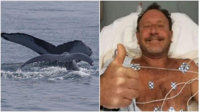 kit ronilac epa prtscr