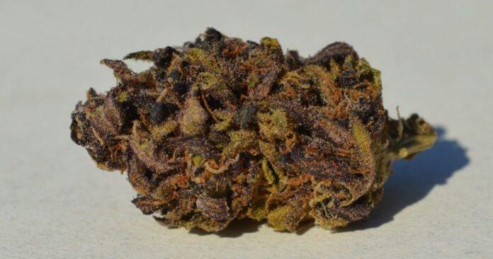 Marihuana Sexxpot 1 1200x630 900x473 1