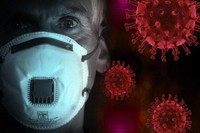 coronavirus covid virus pixabay