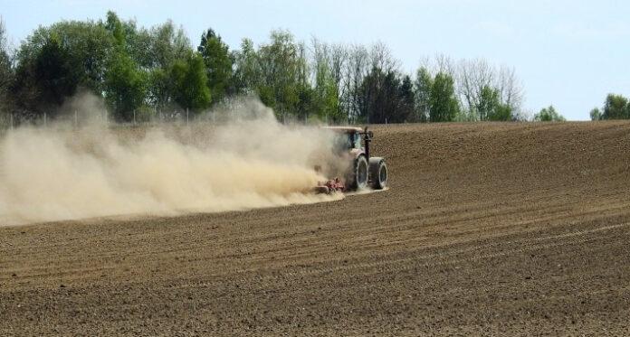 poljoprivreda Fena 1