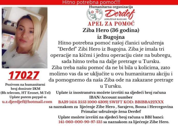 ziba 750x532 1