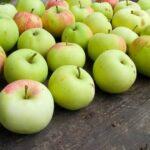 jabuke hrana 99 696x522 1