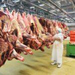 junetina meso turska