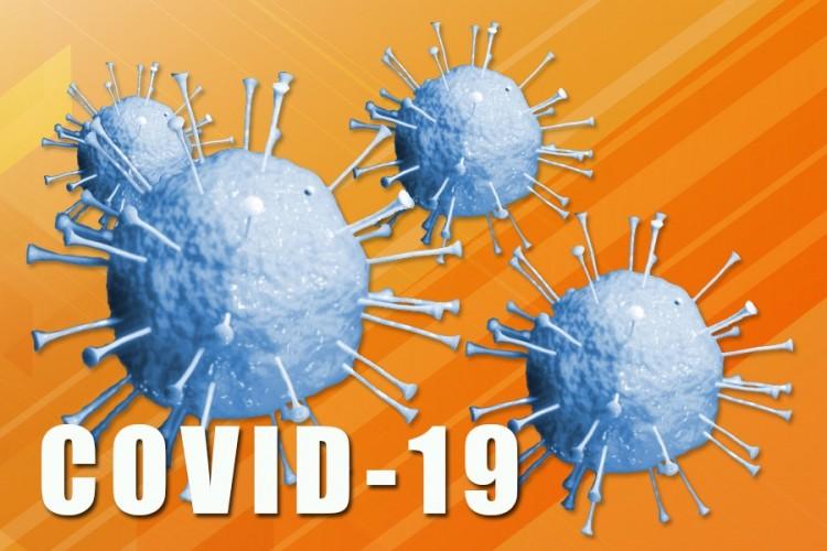 koronavirus 3