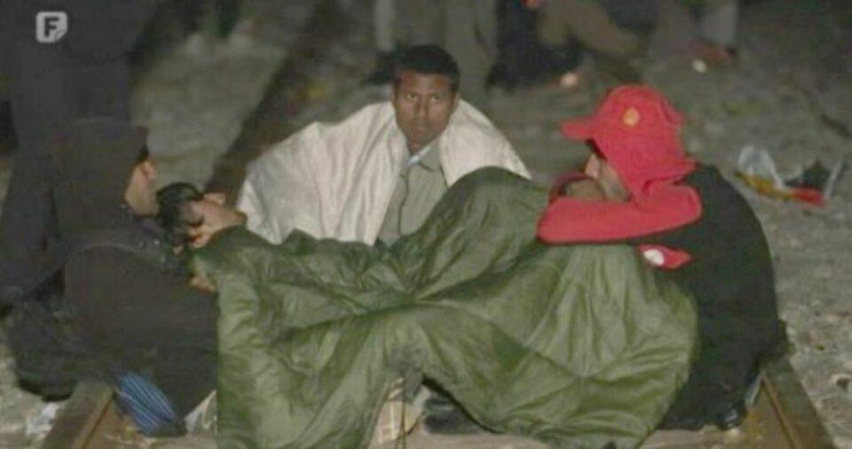 migranti 14