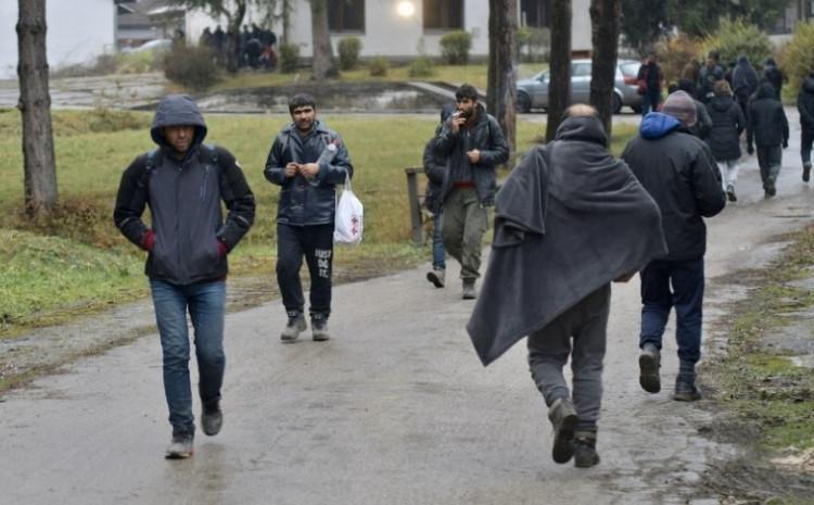migranti 19