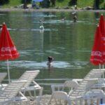 panonska jezera 1 696x373 1