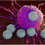 tcelije virusi sciencealert
