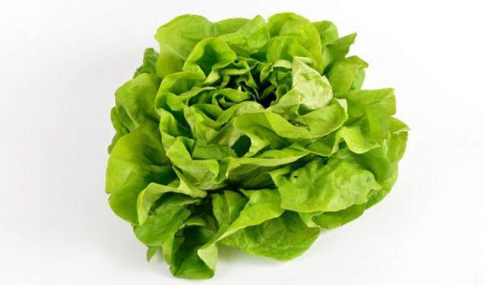 zelena salata22 696x410 1